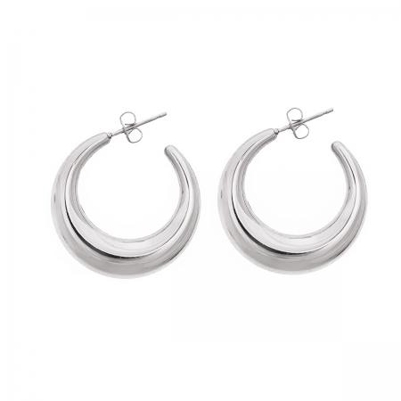Huggie Hoop Earring in Silver Tone